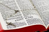 Rosary Bible Page - Saint Mark