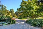 Alleys and walkways among green lawns and colorful trees at botanic garden named as Valentino Park in Turin, Italy.