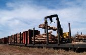 Loading Logs On A Railcar