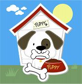 cute puppy eating and dog house