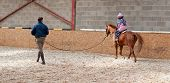stock photo of reining  - Young girl having a lunge lesson to improve posture - JPG