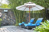Parasol In Front Yard