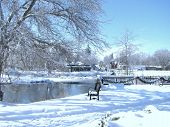Park Bench Near a River in Winter