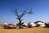 tent camp near Tar desert in India