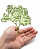 Canadian Growing Savings Concept With Tag Cloud Tree