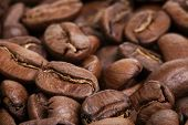 Big Arabica Coffee Beans Background