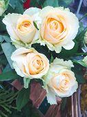 Bouquet Of Light Orange Roses