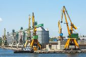 Shipyard And Heavy Load Cranes