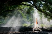 stock photo of exhale  - virabhadrasana hatha yoga in the morning with sun ray through the tree branches - JPG