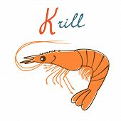 Illustration of K is for Krill