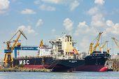 Docked Bulk Cargo Ships