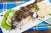 Grilled Gilt Head Sea Bream On Plate With Lemon And Rosemary And Potatoes.