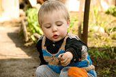 Little Boy Sitting In The Garden.