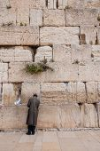 Man Praying At Western Wall, Jerusalem, Israel