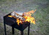 foto of brazier  - Birch firewood burning in the brazier for cooking - JPG