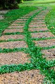 Old Stone Footpath On Green Grass