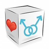 Cube homosexuality