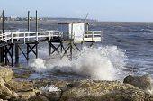 tides on the coast