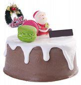 picture of ice-cake  - cake Christmas ice cream cake on background - JPG