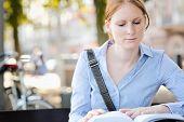 Lunch Break - Businesswoman Reading A Book