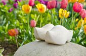 wooden shoes with tulips