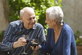 stock photo of elderly couple  - Lovely senior couple on a picnic toasting with wine - JPG
