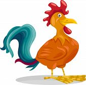 Funny Rooster Cartoon Illustration