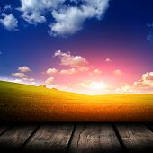 Green field under blue sky. Wood planks floor