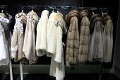 Fur Coats On The Hangers