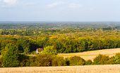 surrey countryside uk