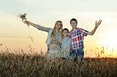 Family hugs in field in sunset