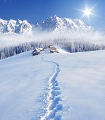 Trail to the mountain huts. Winter landscape in a fabulous location. Mountains Carpathians, Ukraine, Europe. Christmas view