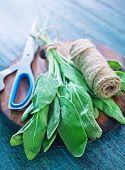 Aroma Sage