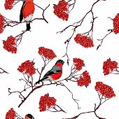 Bullfinches on mountain ash branches seamless pattern