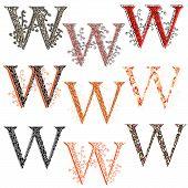 Various Combination Fishnet Letter W.