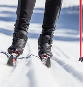 stock photo of nordic skiing  - cross country skiing - JPG