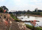 The Bridge of the River Wang