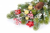 Christmas snow fir tree branch with holly berry and decor. Isolated on white background