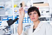 pic of microscope slide  - woman in a laboratory microscope with microscope slide in hand - JPG