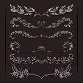 Set of elegant calligraphic foliate borders