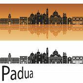 Padua Skyline In Orange Background