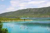 Oyster farms in a bay of the  Mediterranean Sea