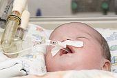 Newborn baby inside incubator