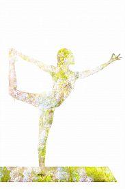 pic of ashtanga vinyasa yoga  - Nature harmony healthy lifestyle concept  - JPG