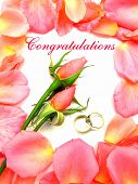 Wedding Congratulations Pink Roses Petals