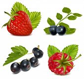 Photo-realistic vector illustration. Set of berries with leaves.