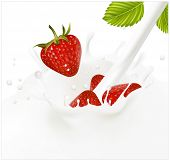 Vector illustration. Red ripe  strawberry falling into the milky splash.