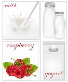 Vector illustration. Elements for design of packing milk dairy. Milky splash. Ripe raspberry.