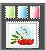 Vector. Postage stamp.