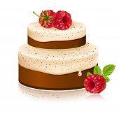 Vector cake with ripe raspberries